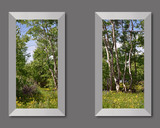 Photo Mural 6tz_2-22x40mdsp-01_Aluminum